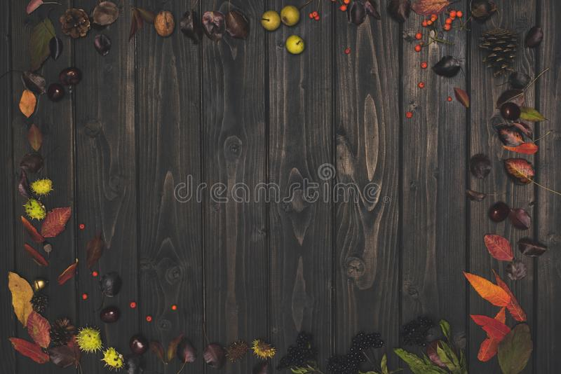 Top view of beautiful autumn composition with dried leaves and pine cones. On wooden background stock image