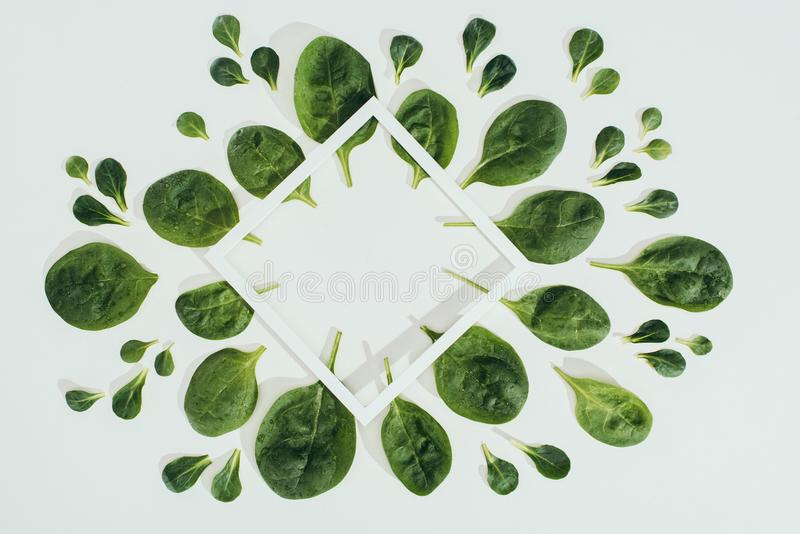 top view of beautiful fresh green spinach leaves and white rhombus frame with copy space royalty free stock photos