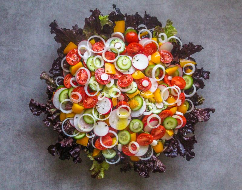 Top view of beautiful healthy and colorful salad dish royalty free stock image
