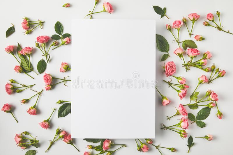 top view of blank card and beautiful pink roses with green leaves on grey stock photo