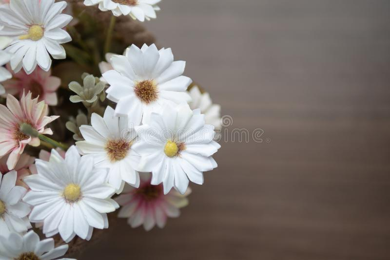 Top view blooming of fake flower on the wooden table. Close up white and pink flowers on the wooden table with yellow pollen. Top view blooming of fake flower stock photography