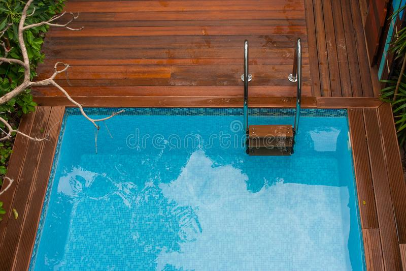 Top view of blue water in swimming pool with grab bars ladder surrounded with wooden floor and green trees. Selective focus royalty free stock photos