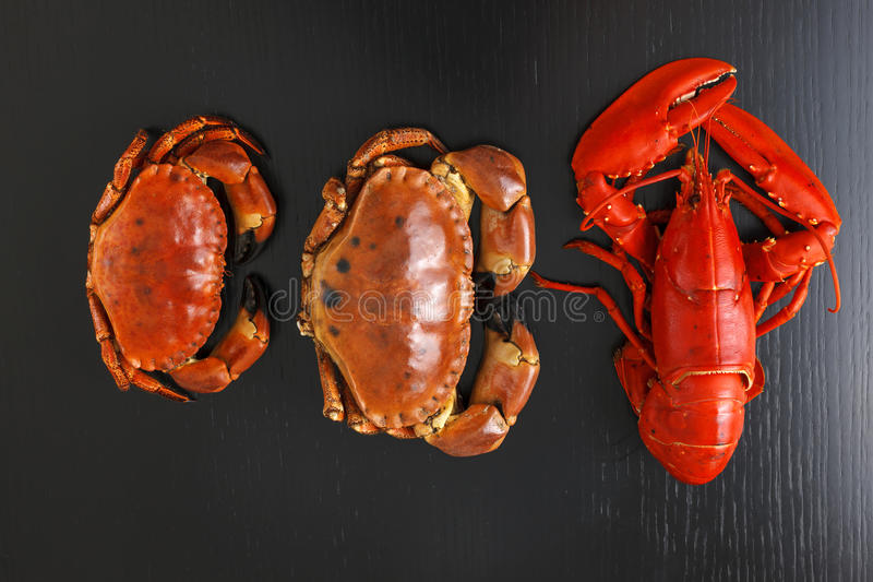Top view of Boiled Atlantic Lobster and crabs. Top view at boiled Atlantic Lobster and crabs on dark wooden table stock photography
