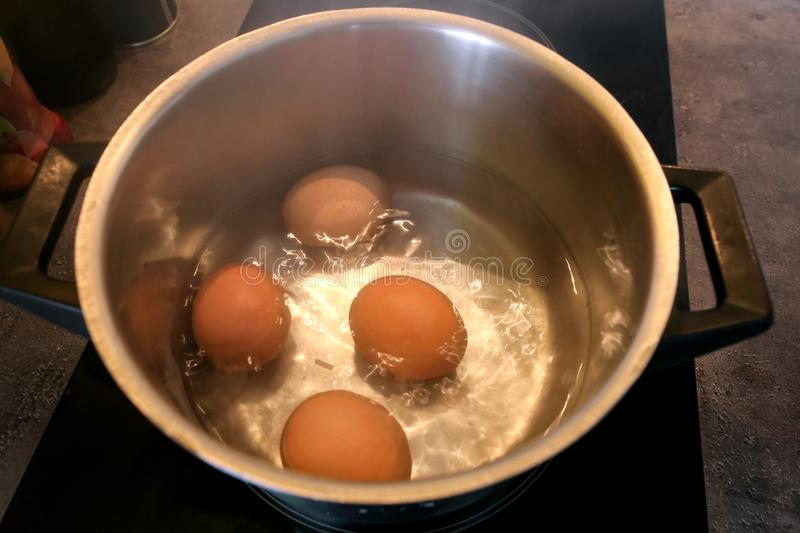 Top view of boiling organic eggs in metal pot into saucepan on electric stove in kitchen. Four chicken eggs in pot. stock photos
