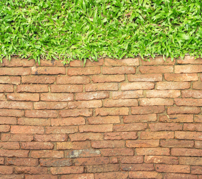 Download Top View Brick Walk Path And Grass Land Background Stock Photo