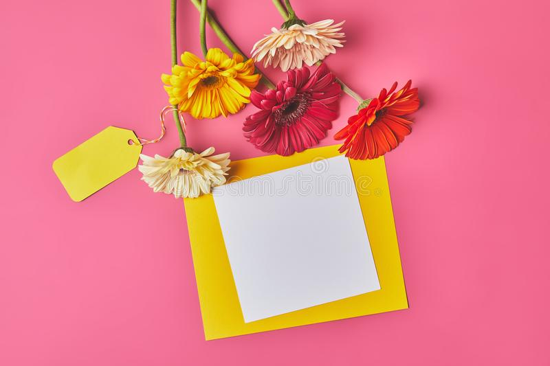 top view of bunch of colorful Gerbera flowers with blank paper on pink, mothers day concept royalty free stock images