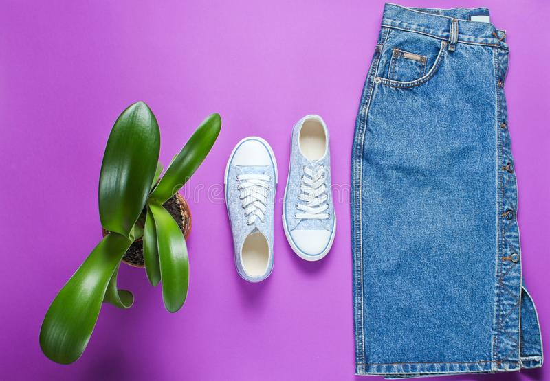 Top view of casual women 's retro style denim skirt. And sneakers shoes, a pot with a green plant on a purple background. Minimalism stock photography