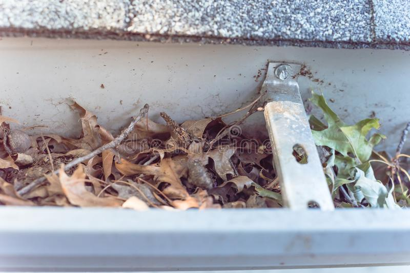 Close-up gutter clogged by dried leaves and messy dirt need clean-up. Top view close-up gutter of residential house full of dried leaves and dirty need to clean royalty free stock images