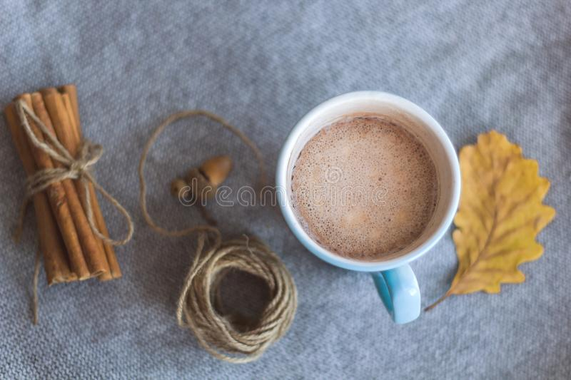 cocoa cup and atumn leaves stock photos