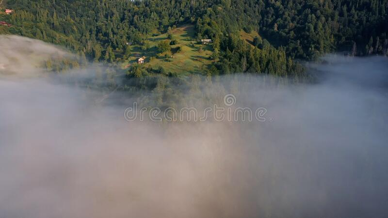 Top view of colorful mixed forest shrouded in morning fog on a beautiful autumn day stock photos