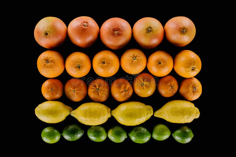 Top view of composition of various ripe citrus fruits in rows. Isolated on black royalty free stock photo