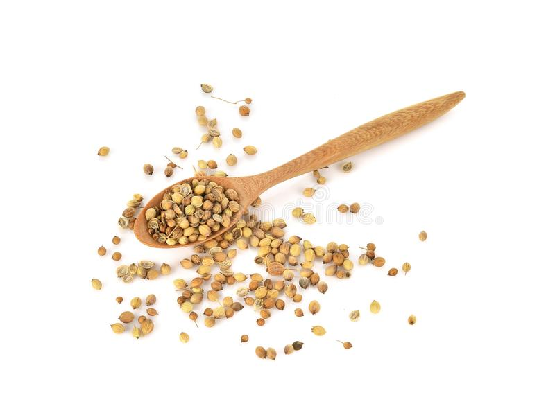 Top view of coriander seeds in wood spoon on white background royalty free stock images