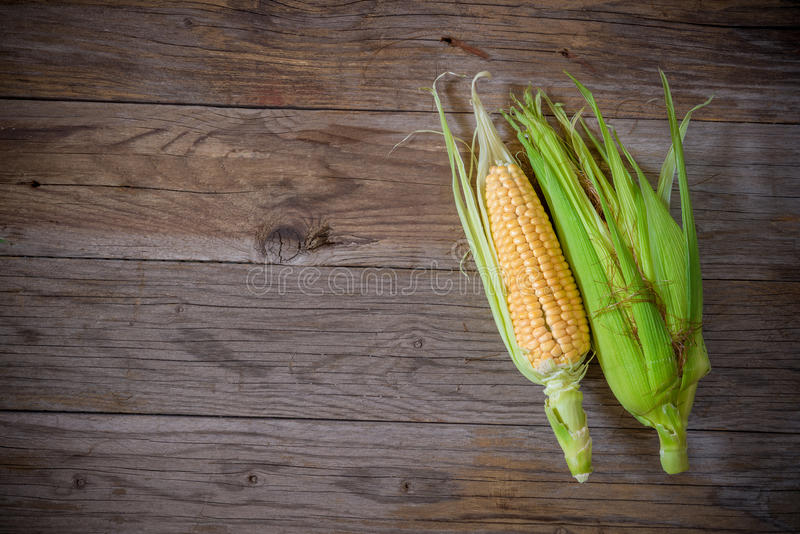 Top view corn cob on wooden table stock photos