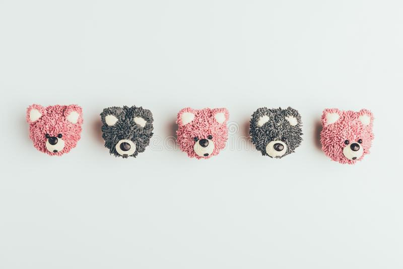 Top view of delicious cupcakes in shape of bears. Isolated on grey stock photos