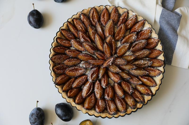 Top view of delicious Traditional Alsatian Plum tart French: Tarte aux quetsches alsacienne royalty free stock photo