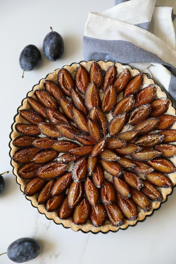 Top view of delicious Traditional Alsatian Plum tart French: Tarte aux quetsches alsacienne. End of Summer fruit dessert. Copy space royalty free stock image