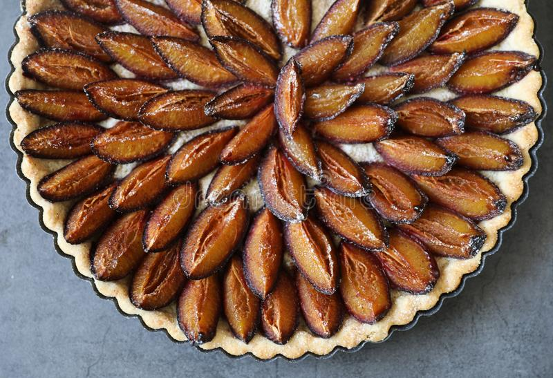 Top view of delicious Traditional Alsatian Plum tart French: Tarte aux quetsches alsacienne. End of Summer fruit dessert. Copy space stock photo