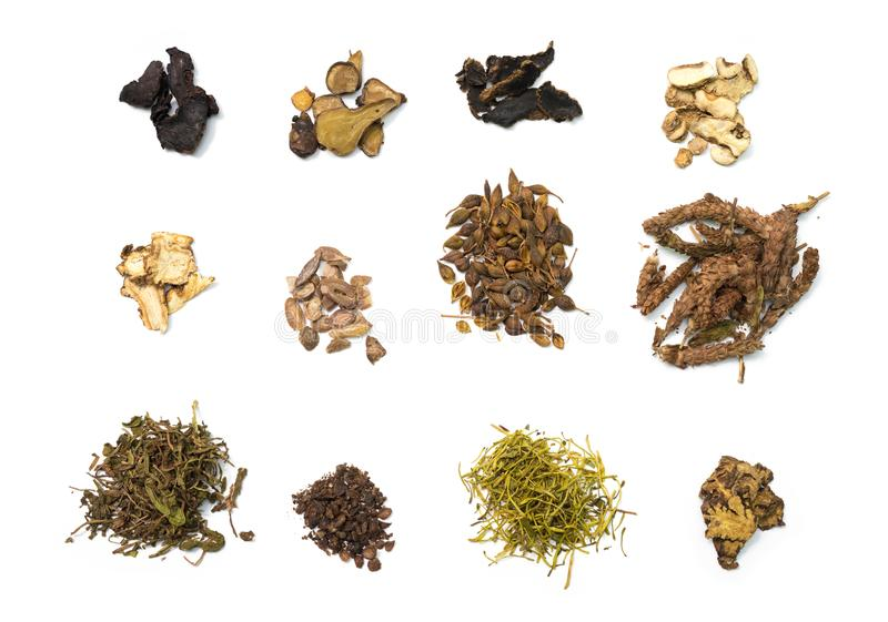 Different Chinese herb on white background. Top view different Chinese herb on white background royalty free stock images