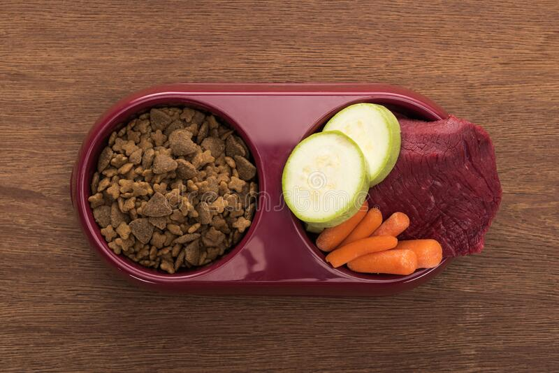 Top view of dry pet food and raw meat with vegetables in bowl on wooden table. Top view of dry pet food and raw meat with vegetables in bowl on wooden table royalty free stock image