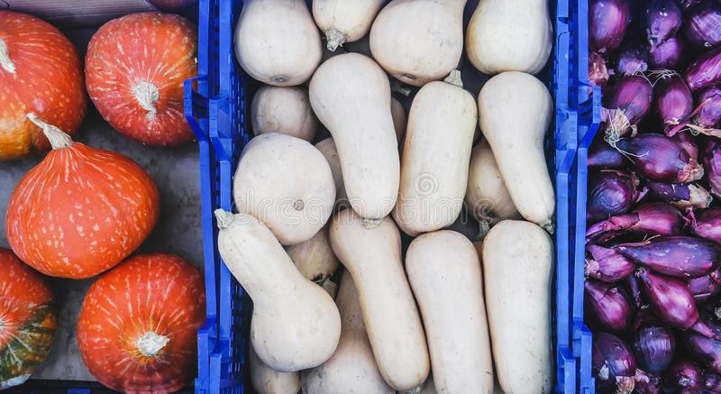 Top view of Farmers Market stall selling organic vegetables. Japanese Hokkaido pumpkins, butternut squash, purple onions stock photography