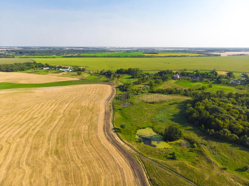 Top view on a field with beveled cereals and the village. Top view on field with beveled cereals royalty free stock images