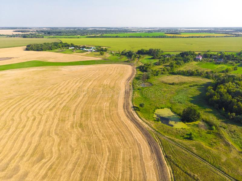 Top view on a field with beveled cereals and the village. Top view on field with beveled cereals royalty free stock photography