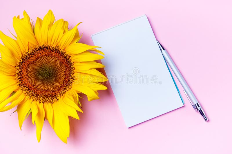 Top view flat lay picture with white clean blank for your text on pink background. Planning concept. Spring.  stock image