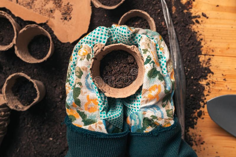Top view of florist holding soil in flowerpot stock photography