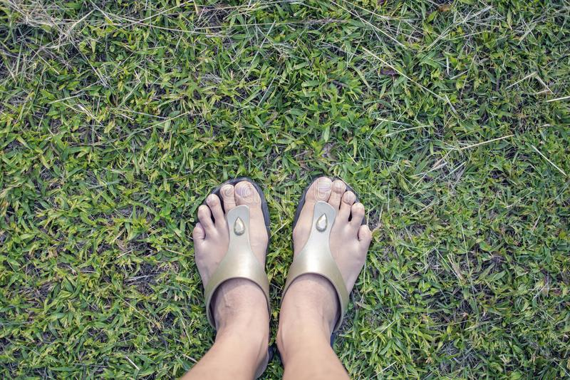 Top view of foot of woman wear brown slippers standing on the green greass. Top view of foot of woman wear brown slippers standing for relaxation on the green royalty free stock photo