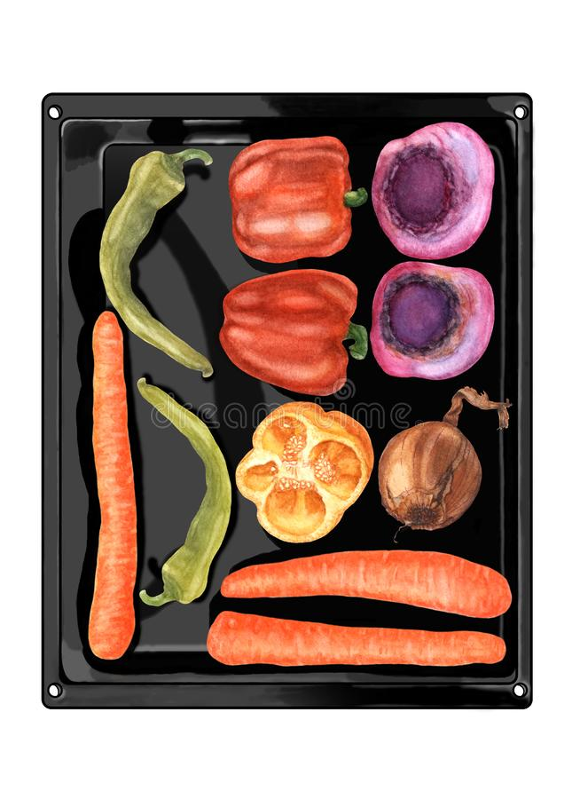 Top view of fresh colorful vegetables lying on black oven pan, hand drawn. Watercolor hand drawn vegetables on black metallic baking pan, flat lay. Top view of vector illustration