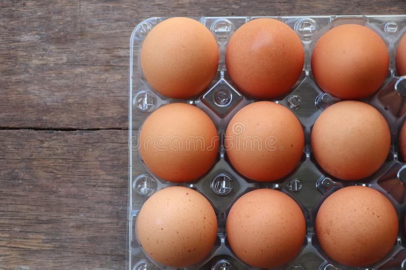 Top view fresh Egg in plastic box good ingredient uncooked from farm good for healthy stock image