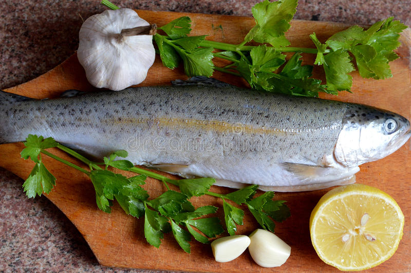 Top view of fresh raw trout stock image