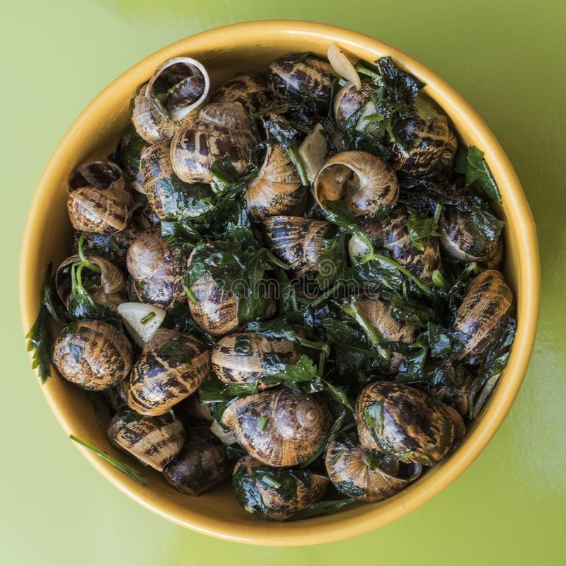 Top view of garden snails cooked French style in butter with parsley and garlic, in a yellow ceramic bowl on a green table.  royalty free stock photography