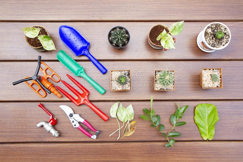 Top view of gardening tools stock images