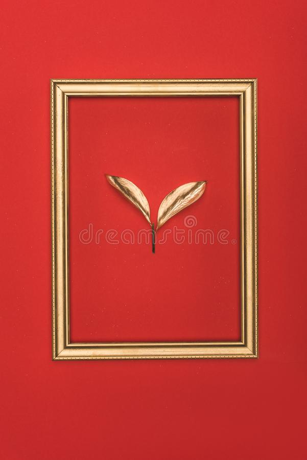 top view of golden photo frame and plant stock photography