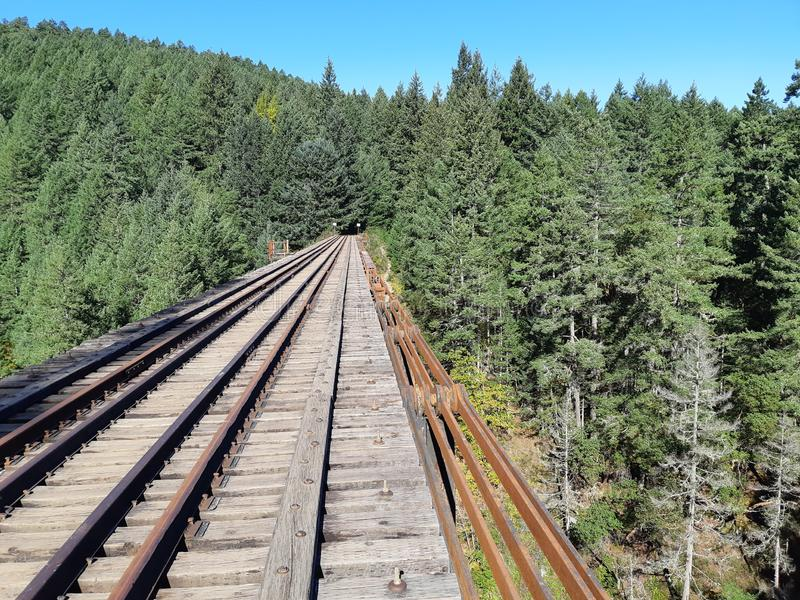 Inactive rail line in the forest stock images