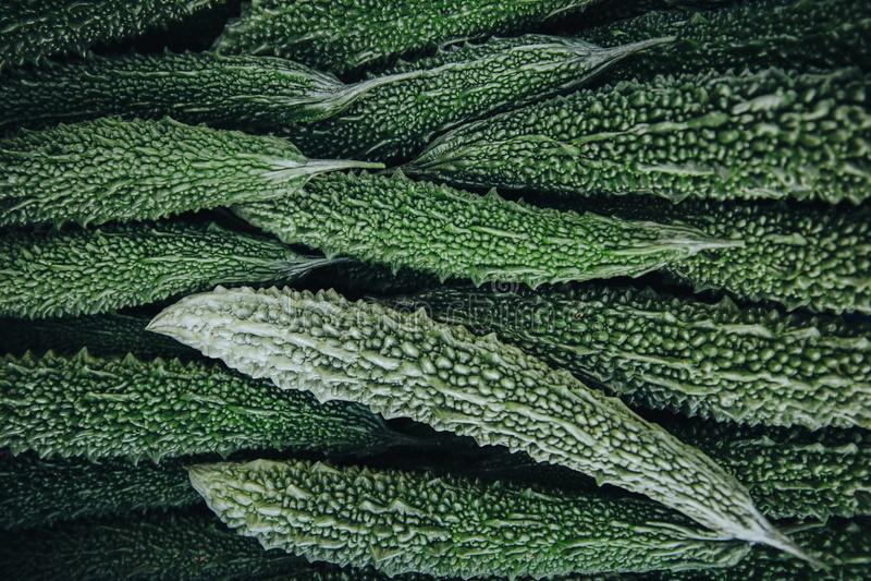 Top view of green fresh Momordica charantia vegetables grown at Thoddoo. Island, Maldives stock image