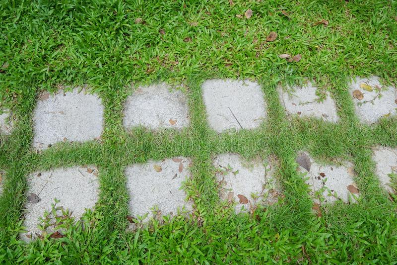 Top view of green lawns with bricks pathways. In the park royalty free stock images