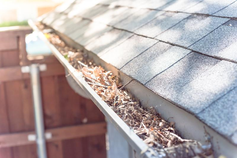 Top view gutter blocked by dried leaves and messy dirt need clean-up. Gutter near roof shingles of residential house full of dried leaves and dirty need to clean royalty free stock images