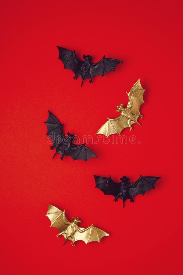 Top view of Halloween decoration with plastic bats. Party, invitation, halloween decoration. Concept royalty free stock images