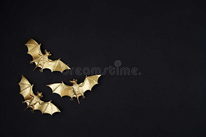 Top view of Halloween decoration with plastic bats. Party, invitation, halloween decoration. Concept stock images