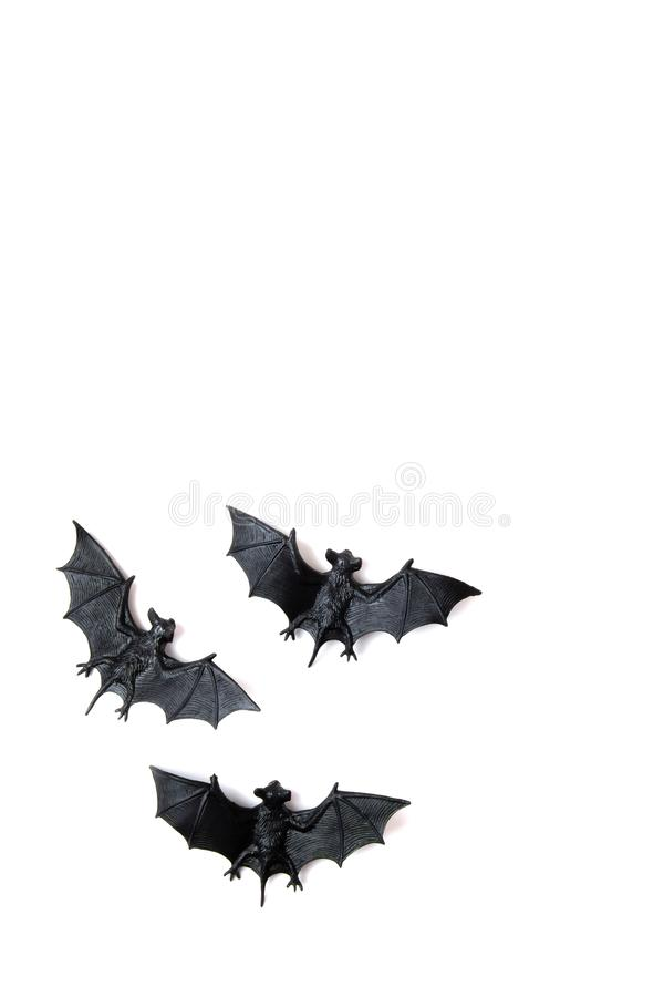 Top view of Halloween decoration with plastic bats. Party, invitation, halloween decoration. Concept royalty free stock photography