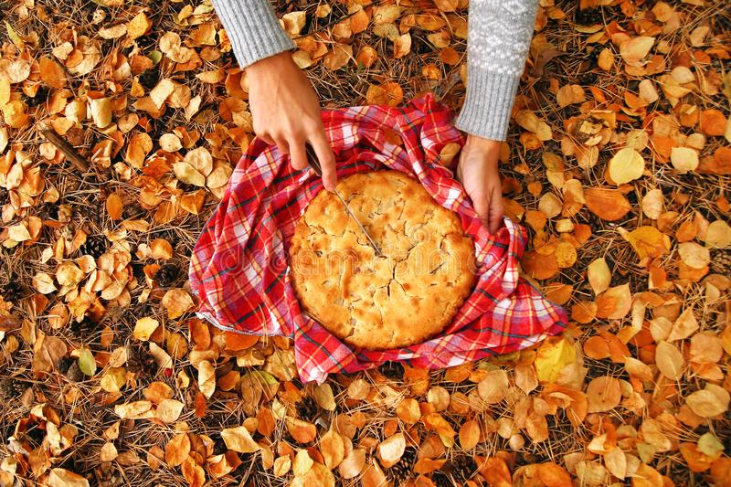 Top view on hands of woman with knife and apple pie on the red checkered towel on a background of yellow autumn leaves. Top view on hands of woman with knife royalty free stock photos