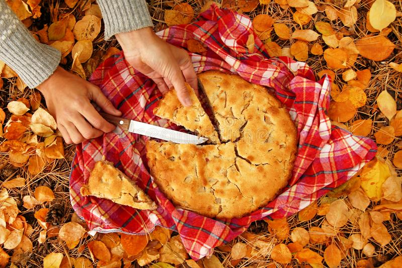 Hands of woman with pieces of apple pie on a red checkered towel and dry yellow autumn leaves. Top view on hands of woman with pieces of apple pie on a red royalty free stock photography