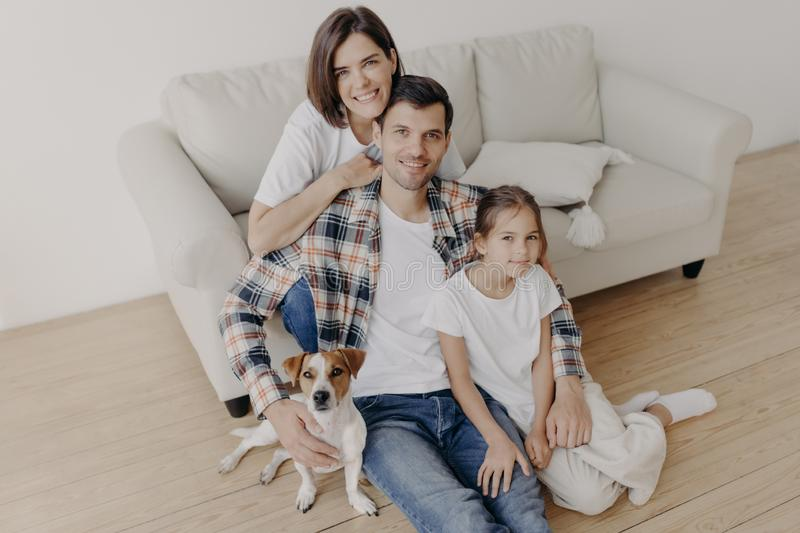 Top view of happy family members pose in spacious room near comfortable sofa, favourite dog poses near, enjoy spare time sit on royalty free stock photos