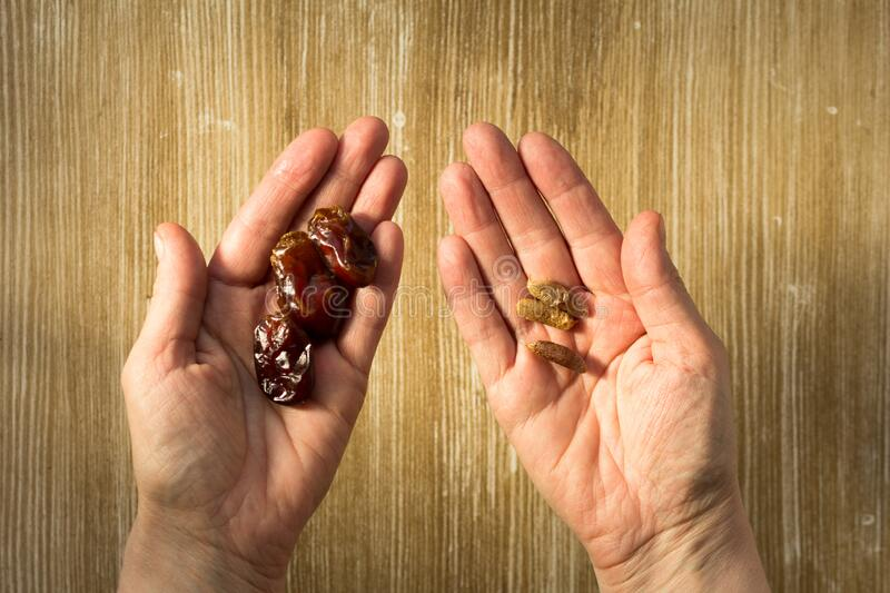 Top view of heap of date fruit on one woman hand and bones as seeds on other hand for planting palm on the wooden background. Top view of heap of date fruit on stock image
