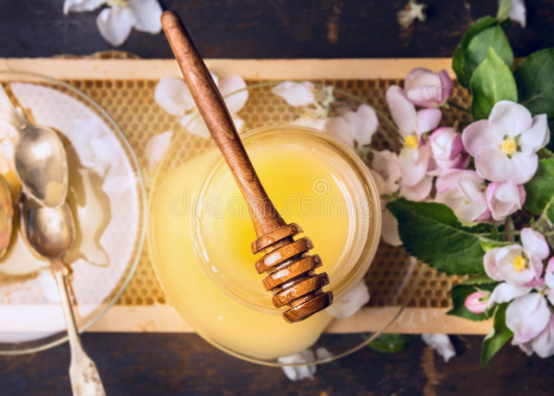 Top view of honey jar with wooden dipper, spoon and spring blossom on honeycomb royalty free stock images