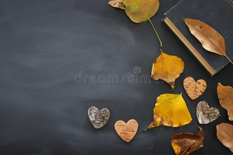 top view image of dry autumn leaves and book over blackboard background. royalty free stock photo