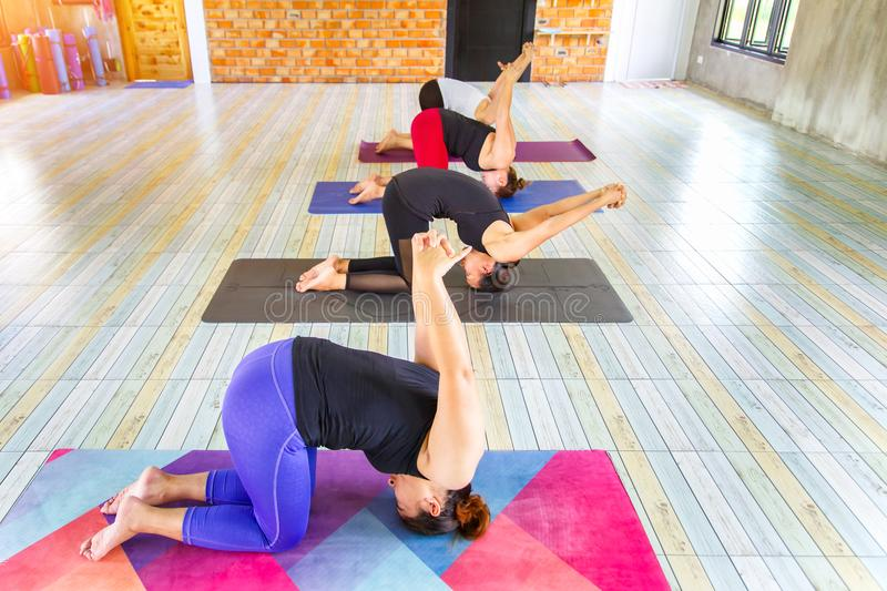 Top view image fitness asian female group doing namaste yoga pose in row at the yoga class. Selective focus royalty free stock photography