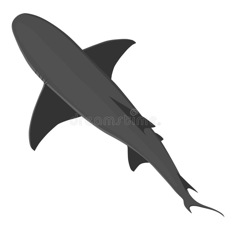 Top view on isoalted on white wild shark of grey colors. Vector animals of the sea or ocean. Ocean predator royalty free illustration